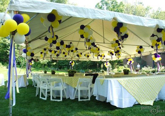 Canopy | Tent Rental Services | Party Event Planner